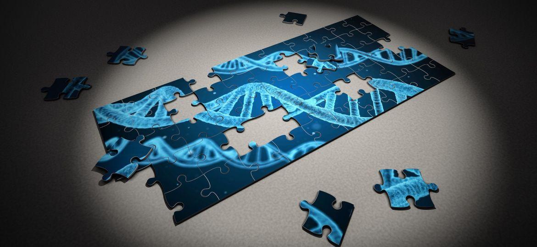 puzzle-2500333_1920-thegem-blog-default