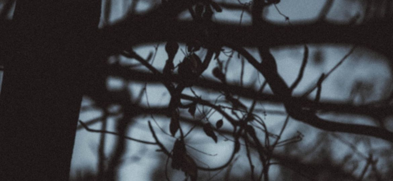 pexels-khoa-vo-5724013-scaled-thegem-blog-default